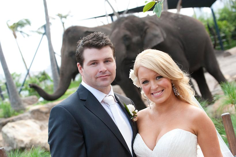 A couple just married at Taronga Zoo