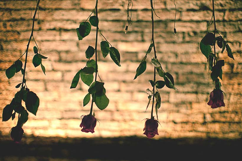 Hanging-rose-decorations